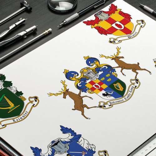 5 coat of arms I designed for the Kilcroney Castle Camp, Ireland. One coat of arms for each province - Connacht, Leinster, Munster, Ulster and one unified (the middle one) for a whole camp