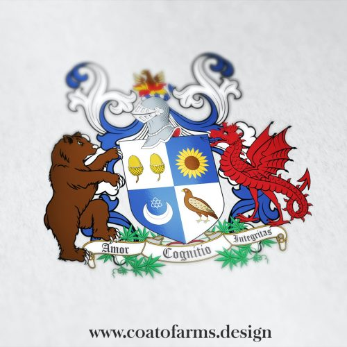 Coat of arms I designed for a client from the United Kingdom, with a red wyvern