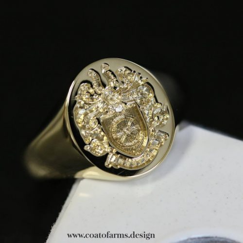 Family crest I designed for a Platten family from the UK RING 1