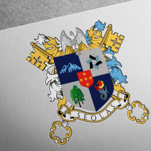 coat of arms for the solas family1